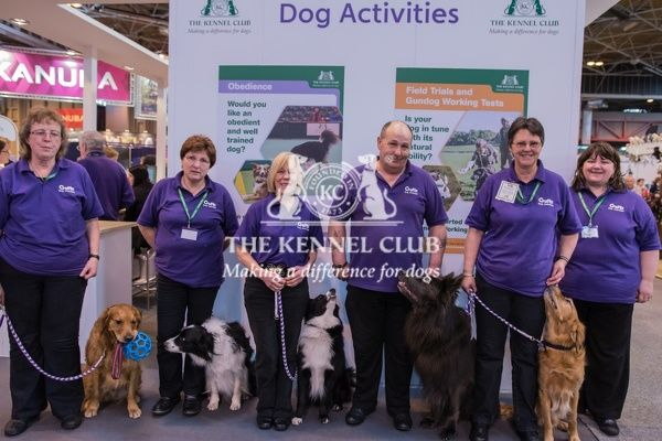 The Obedience Team taking part in the Dog Activities Ring on Day 2 of Crufts 2016   Left to Right   Sue and Bradley (Golden Retiever)   Kerry and Taggy (Border Collie)   Vicky and Joop (Border Collie)   Tony and Blue (German Shepherd Dog)   Janice and Jacob