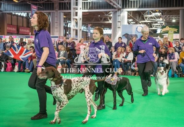 The Heelwork to Music team perform in the Dog Activities Ring during Day2 of Crufts 2016