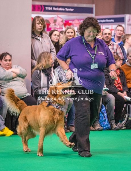Lynda Edmondson with Hroc take part in the Heelwork to Music display in the Dog Activities Ring during Day 2 of Crufts 2016