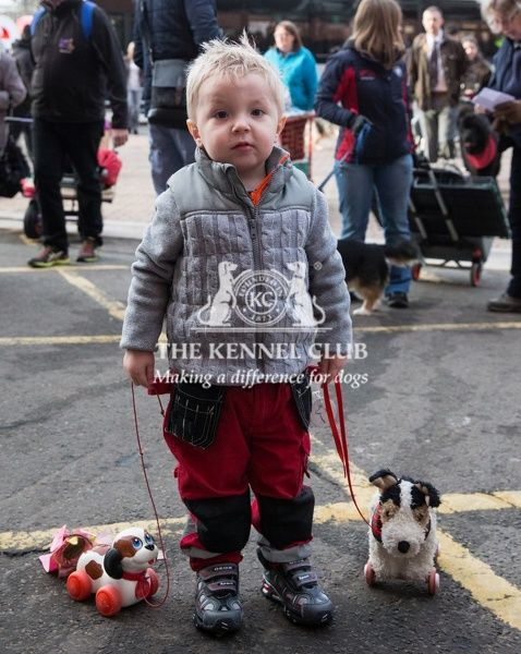 General shot on Friday of little boy arriving with two toy dogs