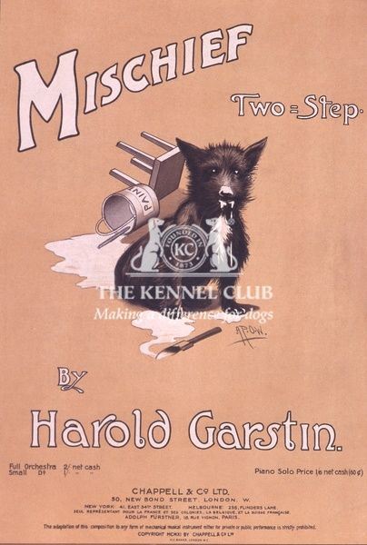 Vintage dog sheet music entitled, Mischief, Two-Step by Harold Garstin