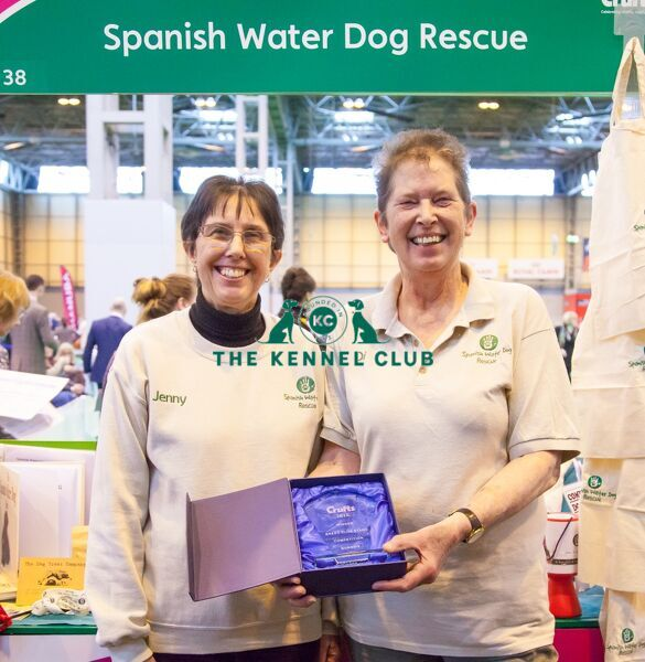 Photo Call  Winner breeder club stand, Spanish Water Dog Rescue