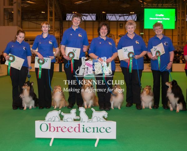 Photo call Obreedience Winners in Obedience ring on Saturday evening