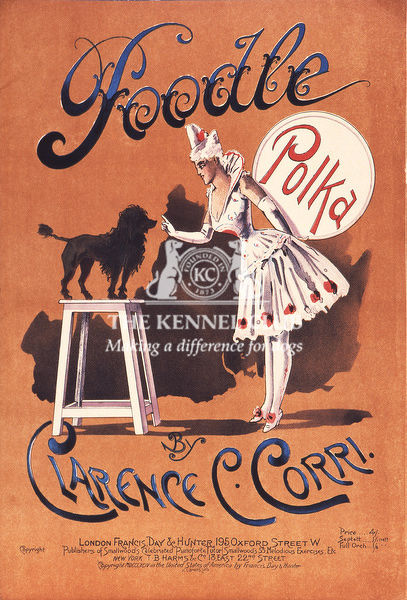 Vintage dog sheet music entitled, Poodle Polka by Clarence C. Corri. This Edwardian illustration features a small poodle standing on a stool whilst working with a young woman who appears to be in circus attire