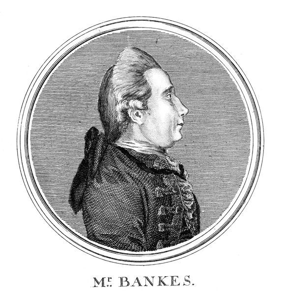 a biography of joseph banks an english explorer and botanist Banks as a boy, painted in c 1757 by an unknown artist sir joseph banks when mr banks ie banks before 1761 captain james cook, sir joseph banks, lord sandwich, dr daniel solander and dr john hawkesworth by john hamilton mortimer (1771.