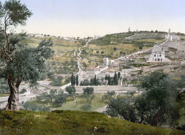 MOUNT OF OLIVES, c1900.  View of the Garden of Gethsemane and the Mount of Olives, with the Russian Orthodox Church of Saint Mary Magdalene (right), East Jerusalem. Photochrome, c1900