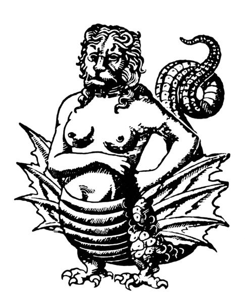 mythology harpies woodcut of a harpy from a 16th century german
