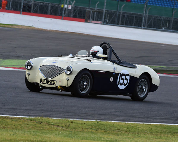 Graham Robson, Austin Healey 100M, USU 239, Jet Battle of Britain Trophy, Silverstone Classic 2015, Chris McEvoy, circuit racing, cjm-photography, classic cars, Classic Racing Cars, historic cars, historic racing cars, Historic Sports Car Club