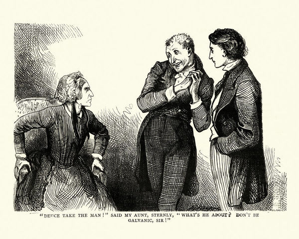 Vintage engraving of a scene from the Charles Dickens novel David Copperfield. Deuce take the man! said my aunt, sternly, What's he about? Don't be galvanic, Sir!. illustration by Fred Barnard