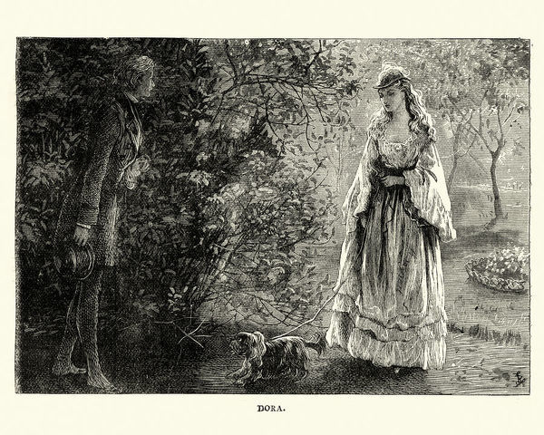 Vintage engraving of a scene from the Charles Dickens novel David Copperfield. Dora walking her dog. llustration by Fred Barnard