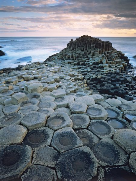 The Giant?s Causeway, eroded basaltic organpipe formations. Giant?s Causeway National Park, County Antrim, Northern Ireland
