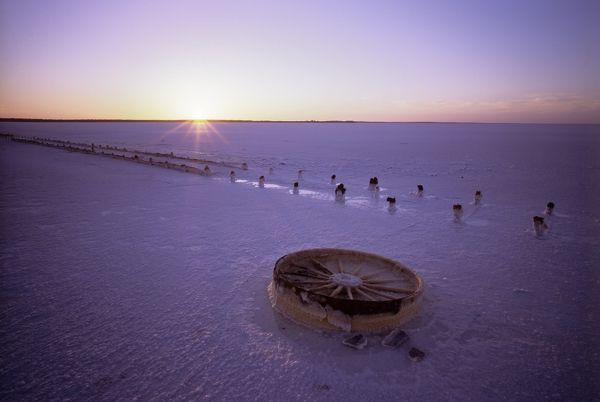 Lake Hart, a salt lake of around 160 sq km with remnants of a fence and discarded cart wheel. Sixty million years ago this was wet country, covered by forest. West of Woomera, South Australia