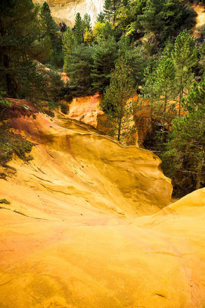 Ochre in an entire massif of ochre protected in a Geological Nature Reserve within the Regional Park, surrounded by pine trees. Luberon Regional Nature Park, Provence-Alpes-Cote d?Azur, France