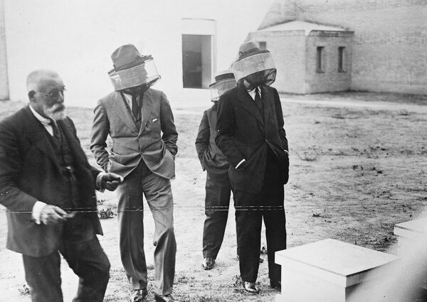 A Royal bee keeper .  The King of Spain visiting an installation of bee hives, the property of the Prince of Asturias, who is taking a personnal interest in agriculture .  16 September 1924