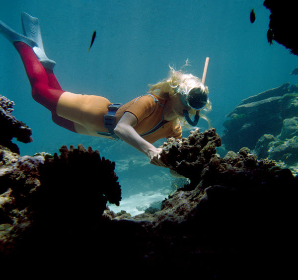 A colour image of actress June Thody snorkeling near rocks and coral. She is wearing a coloured wetsuit with flippers and a snorkel. She is also wearing weights to hold her under the water