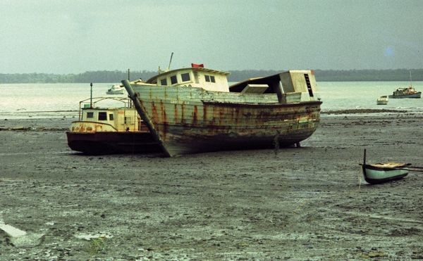 A colour image of a number of boats stranded on the shore at low tide. The stranded boats are different sizes and can also be seen in the background of the image