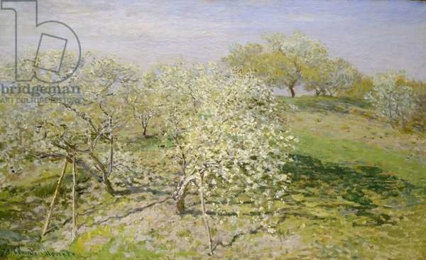 3468899 Spring (Fruit Trees in Bloom), 1873 (oil on canvas) by Monet, Claude (1840-1926); 62