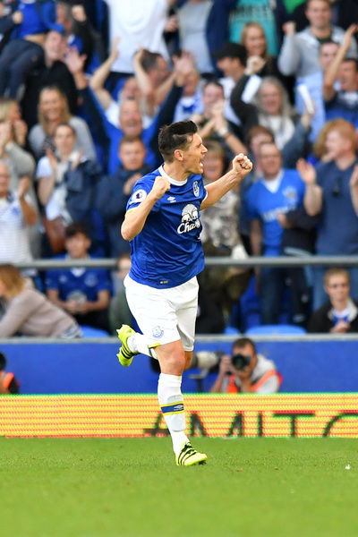 Everton's Gareth Barry celebrates scoring his side's first goal of the gameduring the Premier League match at Goodison Park, Liverpool
