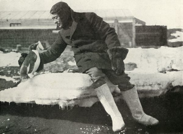 'Lieut. Rennick and a Friendly Penguin', 1911, (1913). Crew member Harry Rennick. The final expedition of British Antarctic explorer Captain Robert Falcon Scott (1868-1912) left London on 1 June 1910 bound for the South Pole. The Terra Nova Expedition