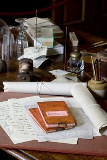 Darwin's letters, manuscripts and notebooks N080590