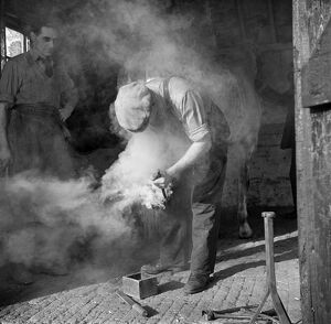 Farrier, Norfolk AA98_13563