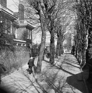 Hampstead Grove AA071844
