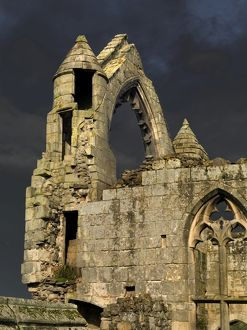 Haughmond Abbey N060678