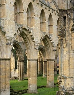 Rievaulx Abbey J060224