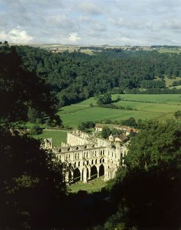Rievaulx Abbey J870480