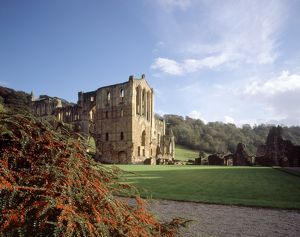 Rievaulx Abbey K021008