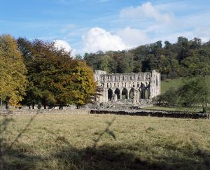 Rievaulx Abbey K031194