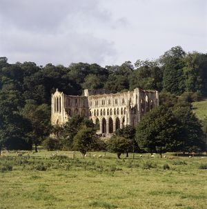 Rievaulx Abbey K050264