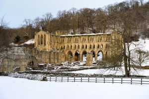 Rievaulx Abbey N100118