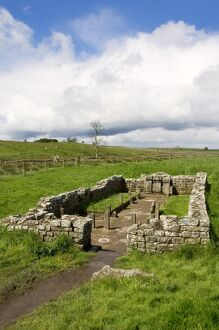 Temple of Mithras N070982