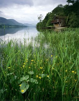 Ullswater Boat House, Lake District J060232