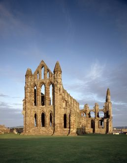 Whitby Abbey J850258