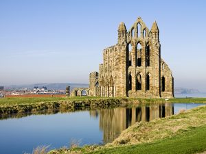 Whitby Abbey N080548