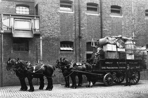 Horse drawn delivery wagon at Paddington Mint Stables, c1910