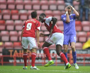 Bristol City V Wolves 170813