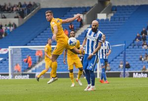 Brighton & Hove Albion, Saturday 15th October 2016