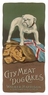Advertisement for City Meat Dog Cakes