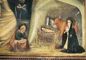 BASSA, Ferrer (1290-1348). Frescoes of the St