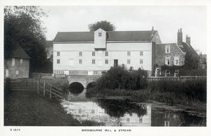 new images grenville collins collection/broxbourne stream