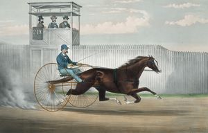 The celebrated trotting horse Judge Fullerton, as he appeare