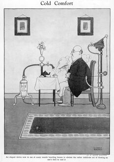 Cold Comfort by W. Heath Robinson