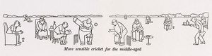 Cricket for the middle-aged / W H Robinson