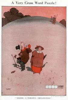A Very Cross Word Puzzle by William Heath Robinson