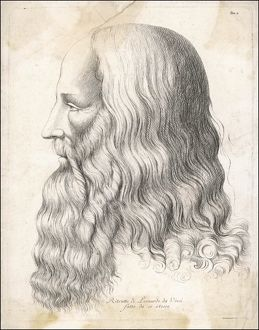 DA VINCI/SELF/PROFILE