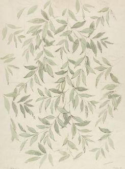 Design for Wallpaper with grey leaves