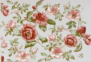 Design for Wallpaper with pink roses